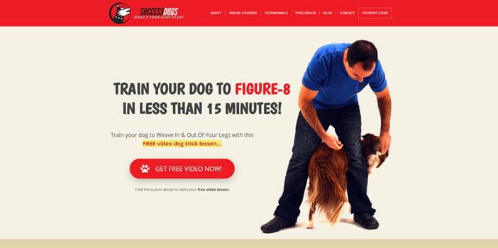 Success Dogs